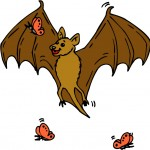 The Bat and the Weasels Fable